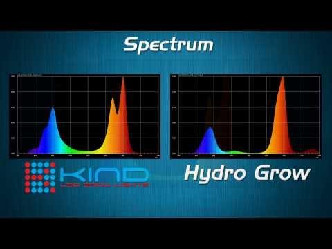 Hydro Grow vs. Kind LED Best Grow Lights