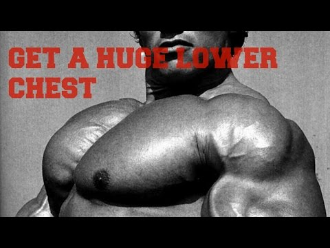 3 Exercises to Get a Huge Lower Chest