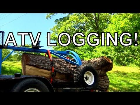 MAXED OUT THE LOG RITE ATV ARCH WITH THIS OLD GROWTH BLACK WALNUT LOG