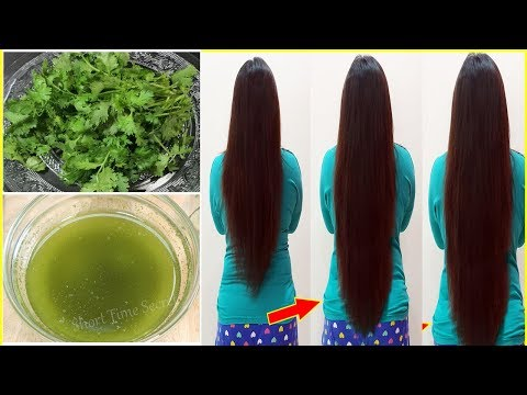 Coriander Oil For Super fast Hair Growth Challenge | How To Grow Long and Thicken Hair Faster