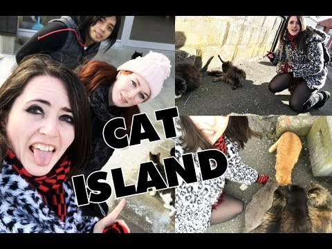 On A Quest To Cat Island, Japan!! [Shiverz In Japan]  ★ 田代島 - 猫島!
