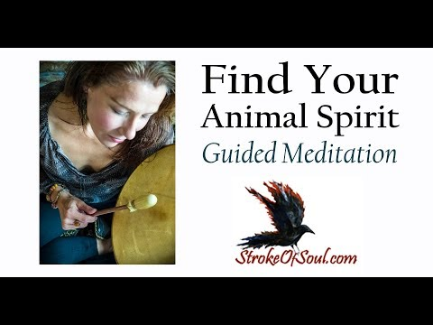 Guided Meditation - Find Your Animal Spirit