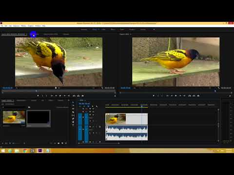 How to Fade In/Out Audio & Video in Premiere Pro 2018 (Keyframes Method, Linear, Bezier)