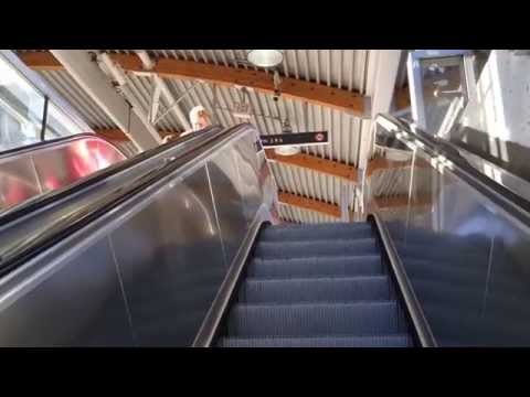 Прогулка в sky train Vancouver (Badger TV Canada)