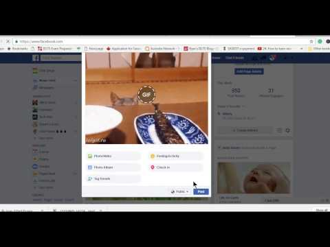 HOW TO POST ANIMATED GIF IMAGE ON FACEBOOK