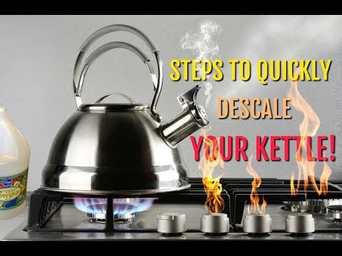 Steps to Quickly Descale Your Kettle - Result Is Affordable and Clean!