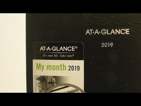 AT-A-GLANCE 2019 Monthly Planner DayMinder FOR PURSE POCKET REVIEW