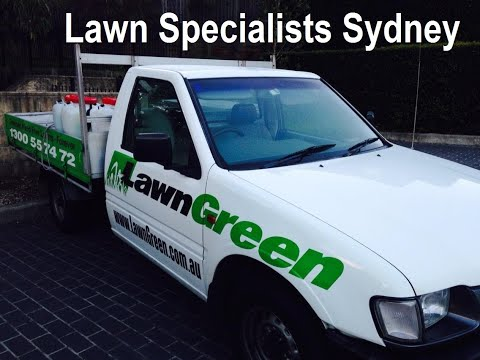 [Kikuyu Lawn Care] [Lawn Problems and Solutions] [Lawn Care Tips]