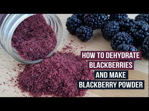 How to Dehydrate Blackberries and Make Blackberry Powder
