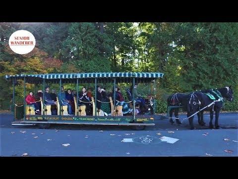 Vancouver street walk, EP 23 - Wet Suit Statue, Splash Park in Stanley Park