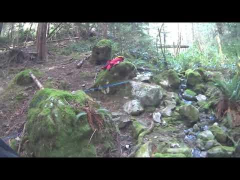 Mini Scott 2016 Vancouver Island. Tough trails. POV Graham Turner