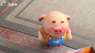 【人人愛我豬小屁】第40話豬小屁日常:小朋友們,你們知道老虎怎麼叫嗎?