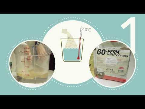 Lallemand Protocole Réhydratation (Français)
