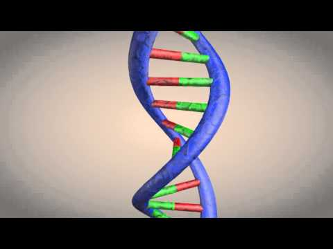 DNA double helix structure animation