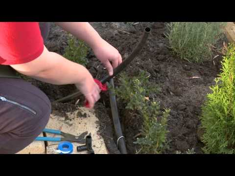How To Install Pop Up Sprinklers - DIY At Bunnings