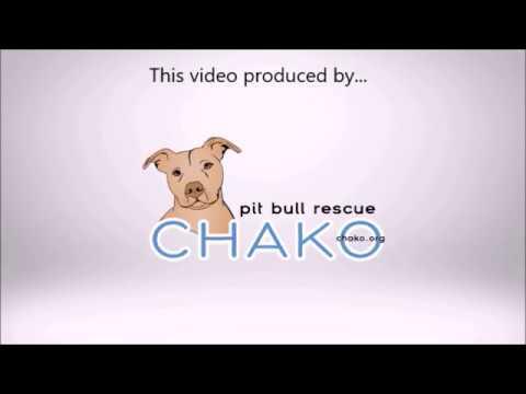 PBU Recruiting video