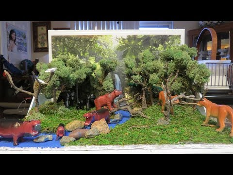 HOW TO MAKE A RAINFOREST DIORAMA (6th Grader project)