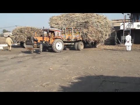 NH Ghazi Tractor Unexpected Pulling 8 wheeler Trailer