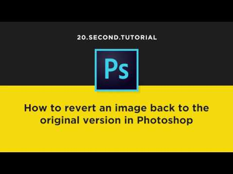Reset to the original image with the History Panel in Photoshop | Adobe Photoshop Tutorial #7