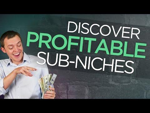 Finding a Profitable Niche within a Niche (Sub-Niches)