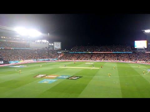 #NZvSA - Crowd Celebrates as Elliott hits Steyn for 6 to win the Cricket World Cup Semi Final!