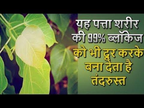 99 प्रतिशत ब्लॉकेज को भी रिमूव कर देता है पीपल का पत्ता / Peepal Leaf Remove Blockage up to 99%
