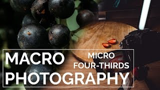 Macro Photography with a Micro Four-Thirds Camera   Throwback Thursday
