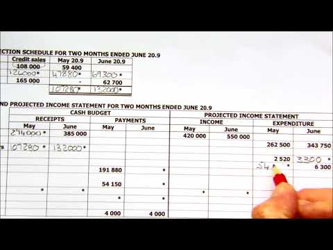 Cash budget and Projected Income Statement in columns