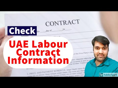 Labour Card and Contract UAE information Print Status