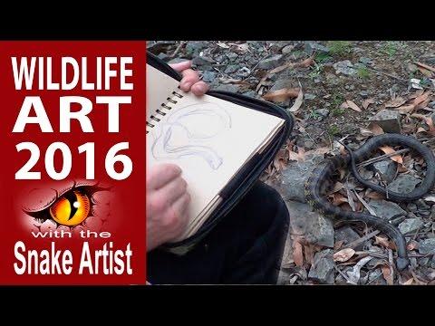 Snake Artist 2016 Channel Retrospective