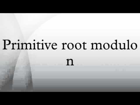 Primitive root modulo n