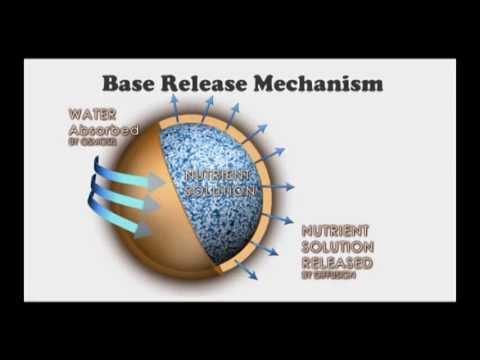 Base - A new generation of compound fertilizer