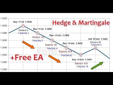 Free Forex Tools : How To setup Hedge & Martingale EA