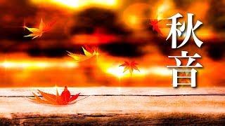 秋を感じる、癒しの音楽【ほっこり 作業用BGM】