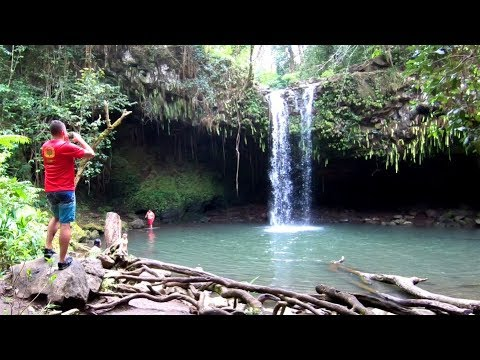 One Day in Maui, Hawaii: Jungle Hiking, Cliff Jumping & Street Food