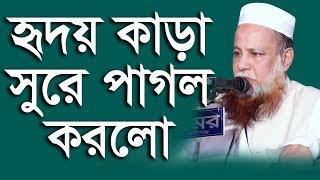 Bangla waz 2019   New Bangla Waz 2019   হৃদয় কাড়া সূরে পাগল করলো