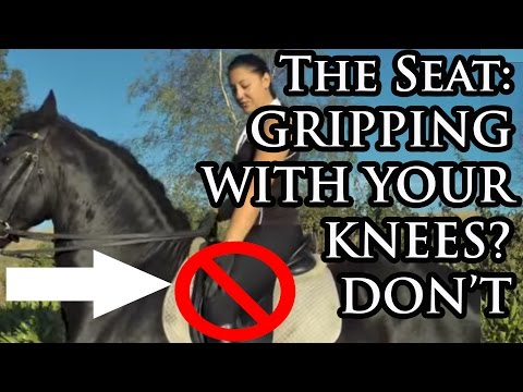 Improving Your Horse Riding Seat - Your Riding Success Episode 35