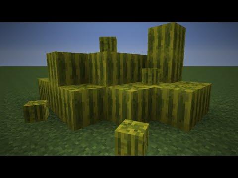 Minecraft- Simple Melon Farm Tutorial!