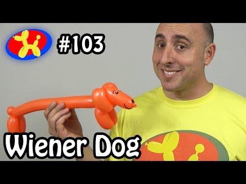 Wiener Dog  - Balloon Animal Lessons #103