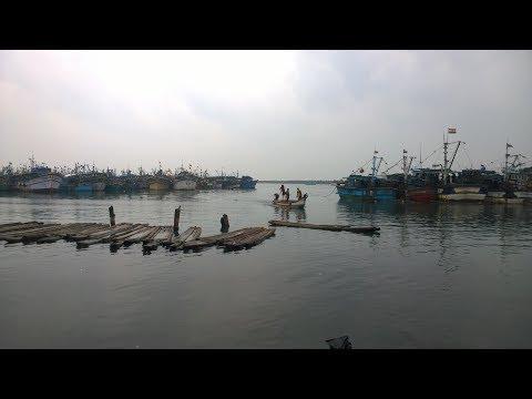 Chennai Fishing Harbour HD ... ميناء صيد الاسماك في مدينة جيناي