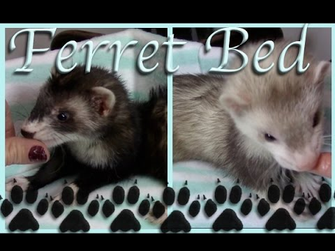 Ferret Bed Tutorial