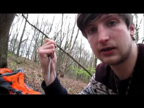 How To Bait Grey Squirrel & Homemade Live Trap Preview