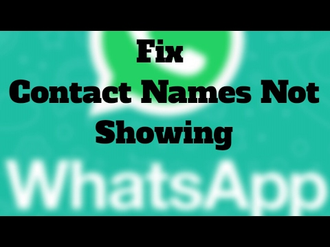 Fix - WhatsApp Not Showing Contact Names but Only Numbers