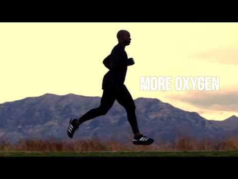 Build Lean Muscle Mass + 90 Day Body Transformation