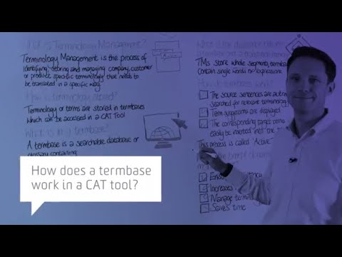 How does a termbase work in a CAT tool?