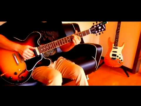 Wakako Zake Siawase no Kaerimichi Solo Guitar  ワカコ酒
