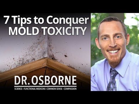 7 Tips to Conquer Mold Toxicity