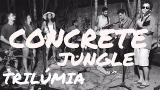 CONCRETE JUNGLE - TRILÚMIA (Bob Marley Cover)