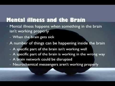 Understanding the Biology of Mental Illness