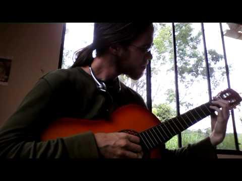Crazy Jungle Bird Interrupts Classic Folk Song